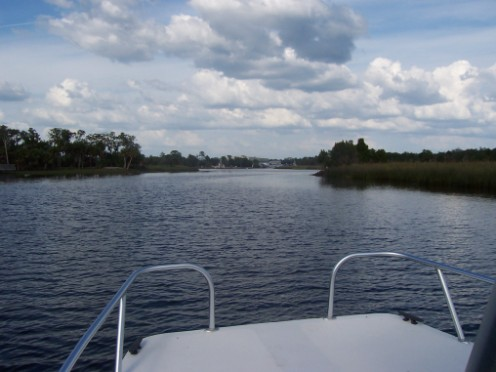 St, Marks and Wakulla Rivers Converge